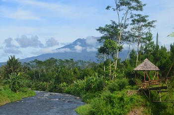 Picture of Harris Ijen Crater Homestay in Banyuwangi