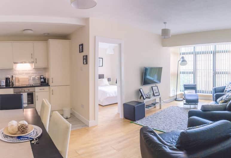 ダブリン 4 スペーシャス 3 ベッドルーム アパートメント, ダブリン, リビング エリア