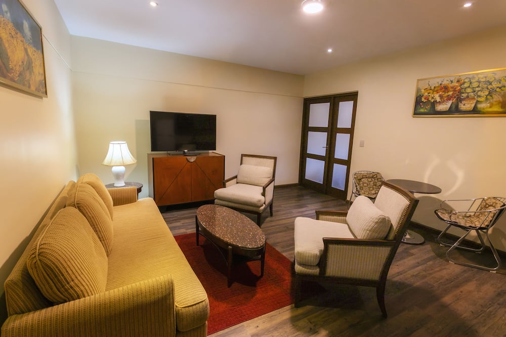 Apartment, 1 King Bed, Accessible, City View - Living Area
