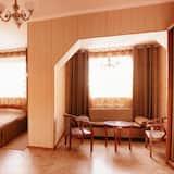 Studio Suite Cao cấp, 1 giường cỡ queen, Quang cảnh thành phố - Phòng