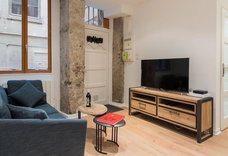 DIFY Thomassin - Quais du Rhône, Lyon, Luksushuoneisto, 1 makuuhuone, Olohuone