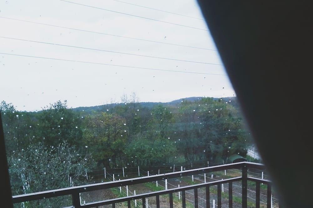 Pokoj se dvěma jednolůžky - Výhled z balkonu