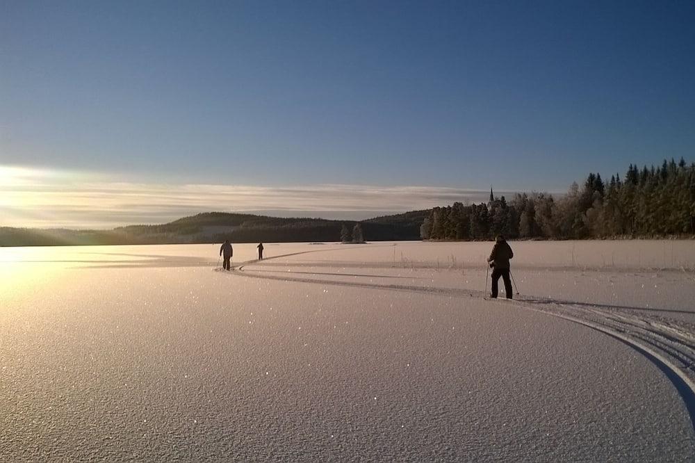رياضات التزحلق على الجليد والماء