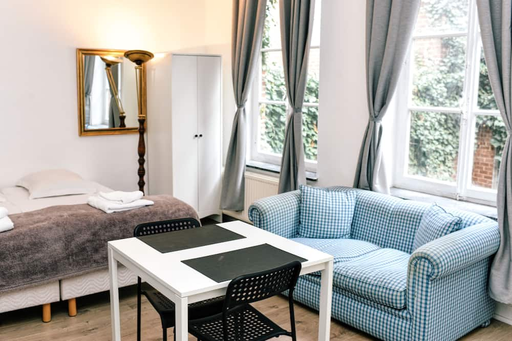 Room 2: 2 Persons room, double bed  - King size with own bathroom and kitchen (Studio Apartment)  - Living Area