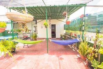 Hình ảnh Armando's House - Close To The Sea tại Havana