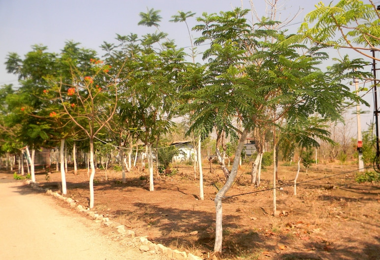 Tigers Heaven Resort, Warora, Property Grounds
