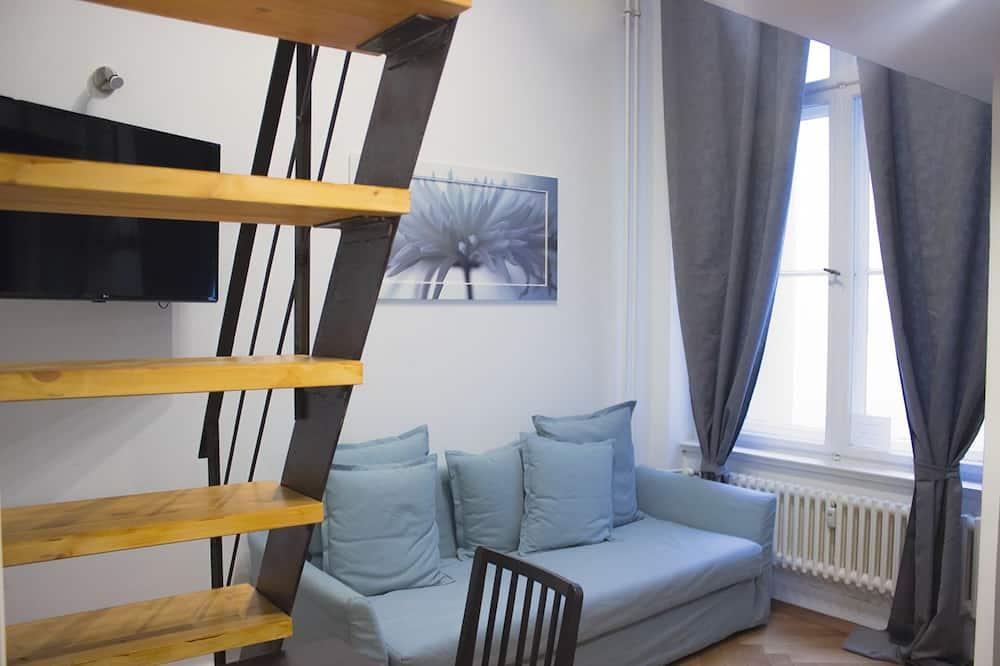 基础公寓式客房, 1 张双人床和 1 张沙发床 - 起居区