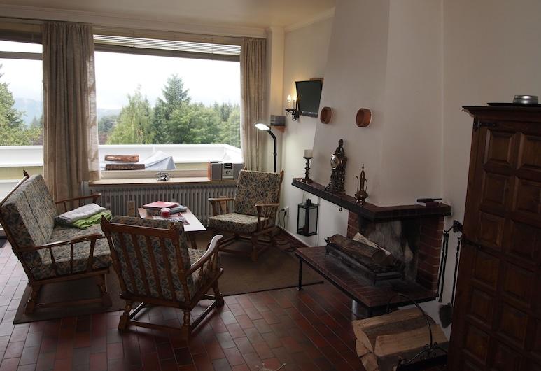 Meyers Fewo Entspannen am offenen Kamin, Landkreis Goslar, Apartment (incl. 35 EUR cleaning fee), Living Room