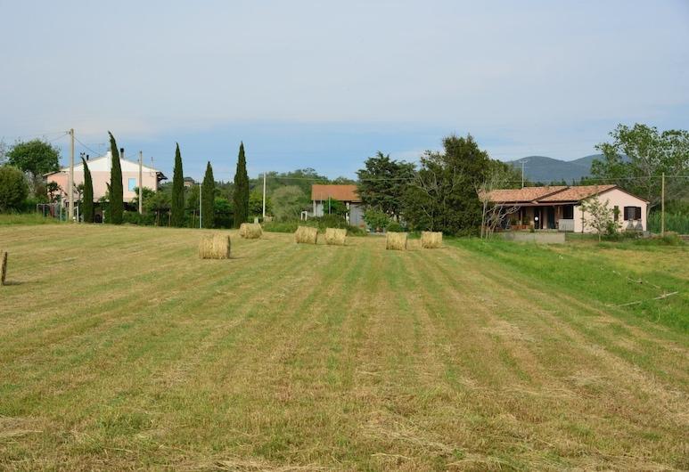 Agriturismo Ferri di Ferri Donatella, Bibbona, Terrenos del establecimiento