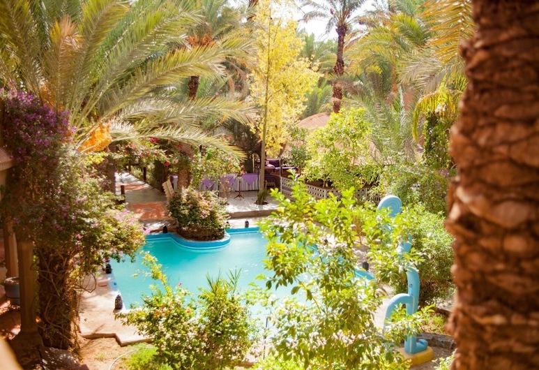 Riad Lamane, Zagora, Pool