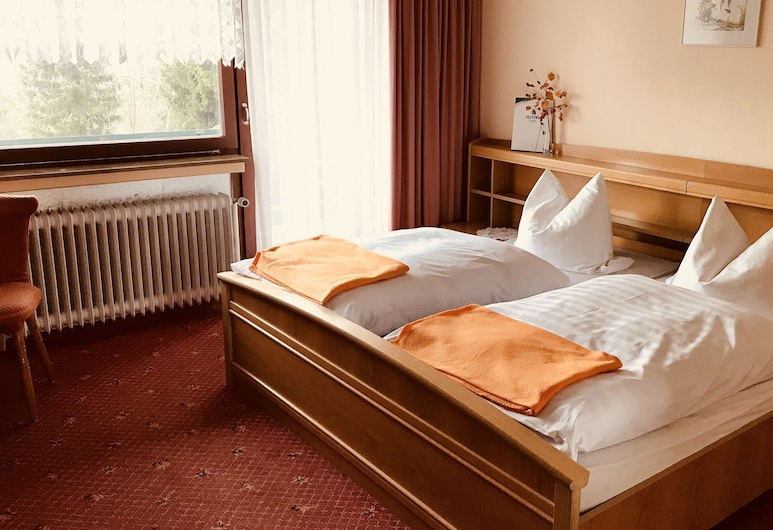 Berghotel-Hohegeiß, Braunlage, Tweepersoonskamer, uitzicht op bergen, Kamer