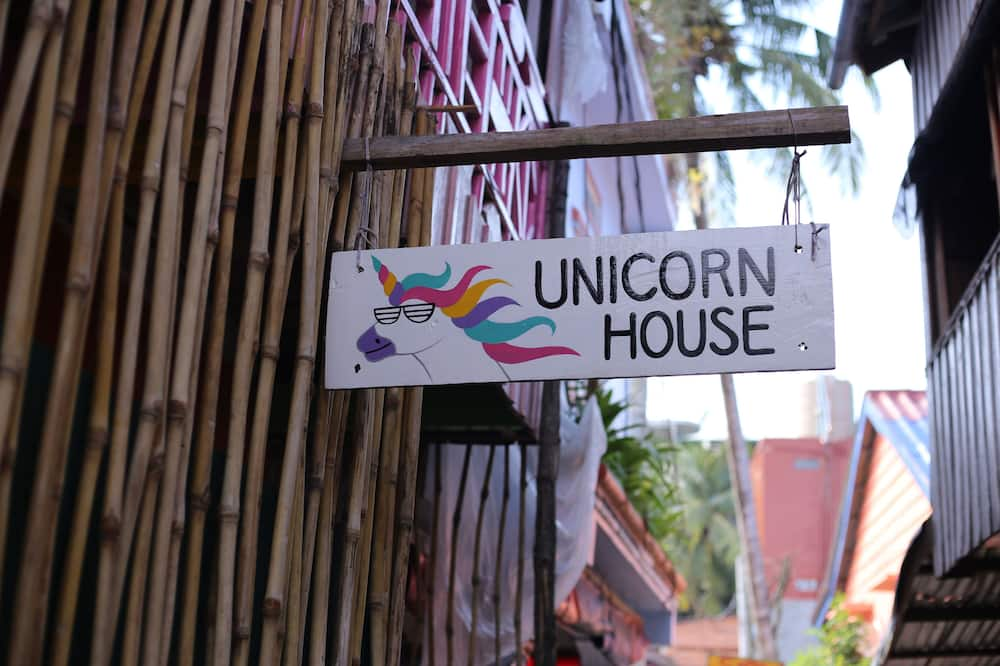 Unicorn Guesthouse