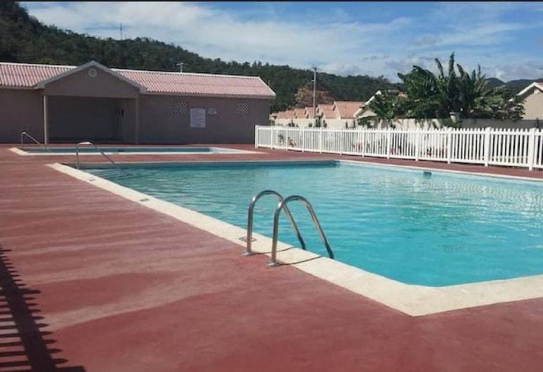 Caymanas Adrian's Vacation House, Kingston, Bazén