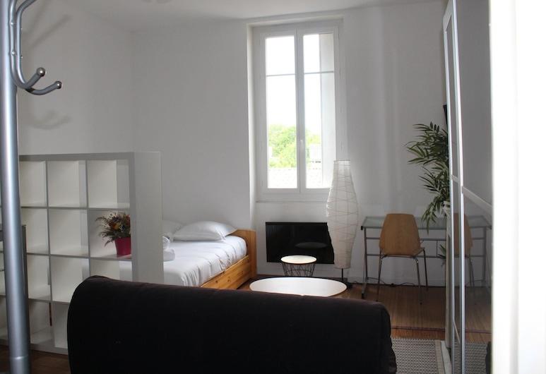 Joli Appartement Quartier Saint Genès, Bordeaux, Salon