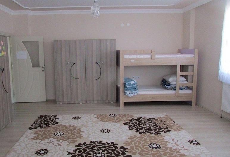 Hacegan Hostel, Bayburt, Štvorlôžková izba, Hosťovská izba