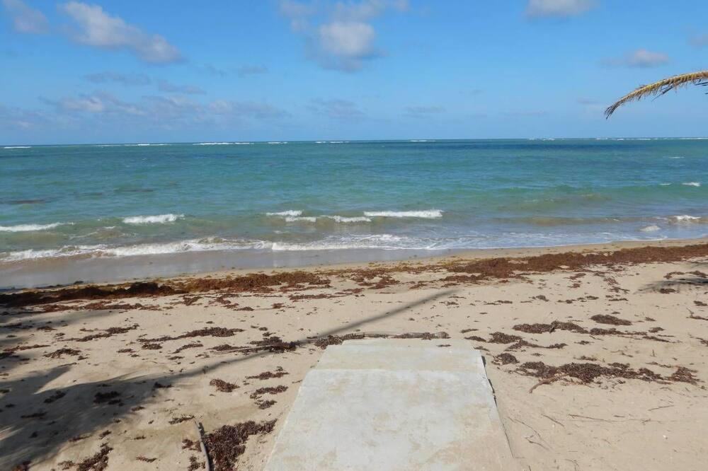 ハウス - ビーチ