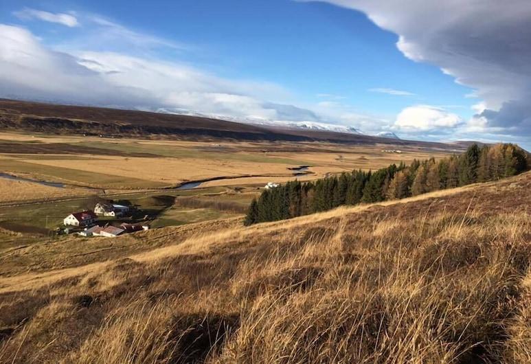 Öndólfsstaðir Farm B&B, Laugar, Property Grounds