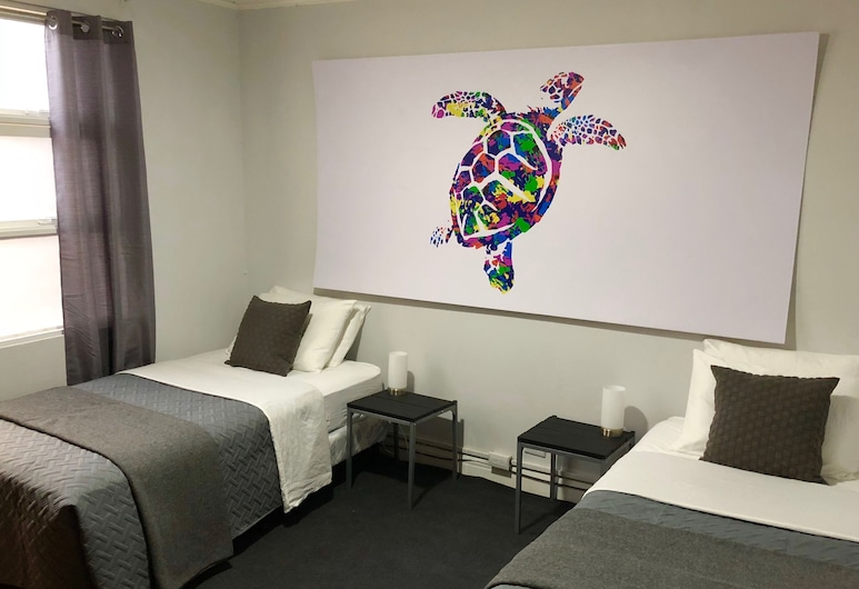Turtle Saving Hostel, San Jose
