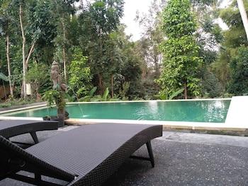 烏布桑嘉旅館的相片