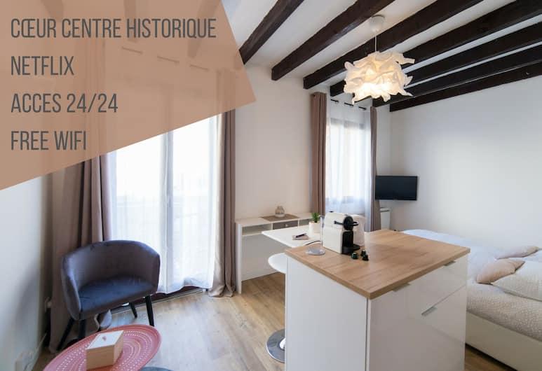 Le Côté Garonne - Centre Historique - Netflix, Tulūza