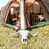 Palapinė (No Tent or Bed Provided) - Kambarys