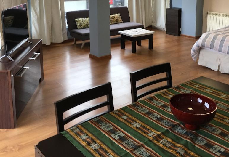 Edificio Tower, Ushuaia, Luxury Apartment, 1 Bedroom, City View, Living Room