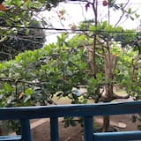 Traditional House, Multiple Beds, Non Smoking, Garden View - Balcony View