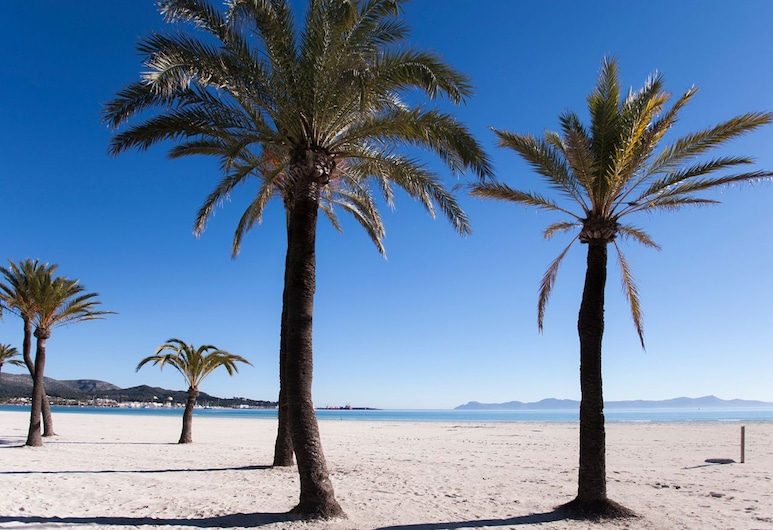 Mar Salada Apartments, Alcúdia, Vistas al paisaje desde el alojamiento
