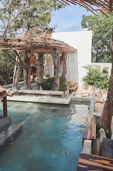 圖倫圖倫蘭花屋飯店的相片