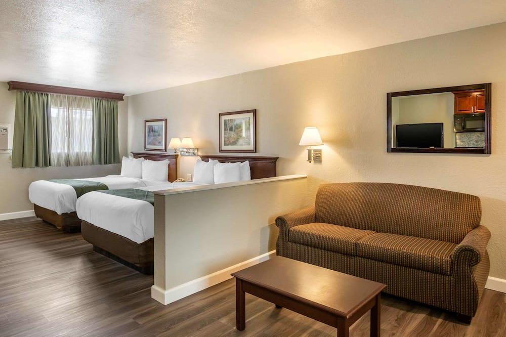 Σουίτα, Περισσότερα από 1 Κρεβάτια, Μη Καπνιστών - Δωμάτιο επισκεπτών