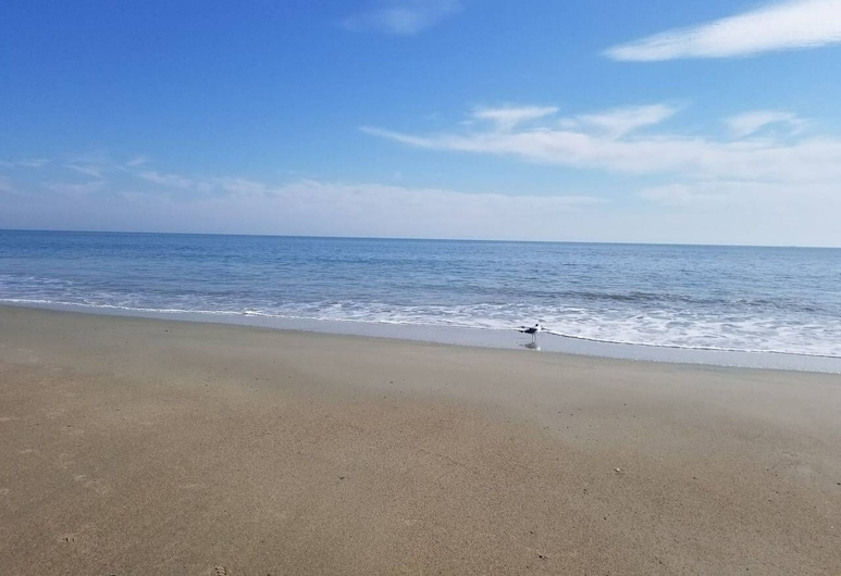 Fabulous Queen 1br: 400ft to Beach! Free Parking + Wifi, Tybee Island, Beach