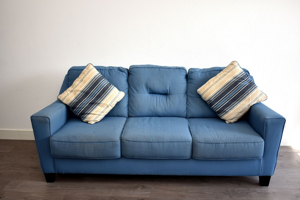 Standard lakosztály, 1 king (extra méretű) franciaágy és egy kihúzható kanapé, nemdohányzó - Nappali rész