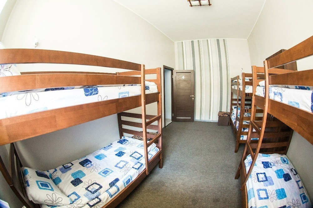 Wspólny pokój wieloosobowy, koedukacyjny pokój wieloosobowy (6 beds) - Minilodówka