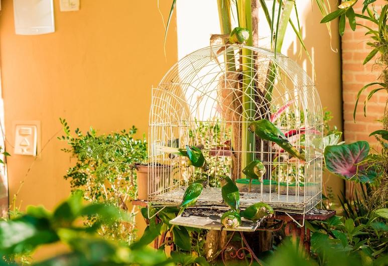 Recanto das Tiribas, Ilhabela, Property Grounds