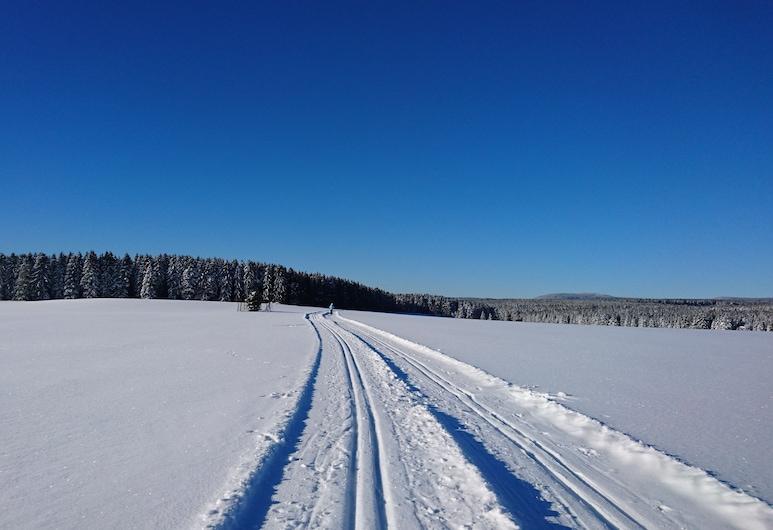 Ferienwohnungen am Brockenblick, Oberharz am Brocken, Wintersport/Ski