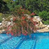 Villa, 2 Bedrooms, Private Pool, Mountain View (La Torre) - Private pool