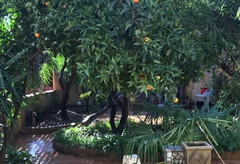 Il Giardino di Daphne, Naples, Courtyard