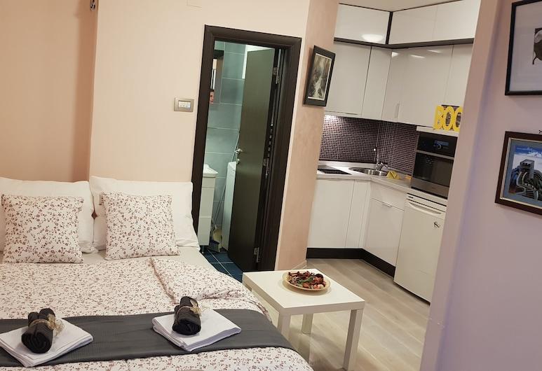 Belgrade EYE Apartment, Belgrad, Studio, Zimmer