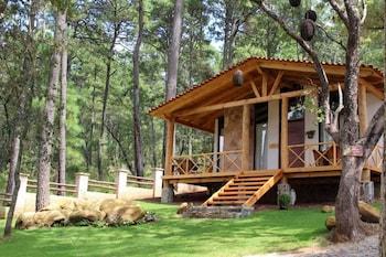 Foto Cabañas La Vid Del Bosque di Tapalpa
