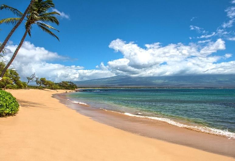 Hk-b16 - Maui Gardenview Condo in Secluded Beachfront Resort on Ma'alaea Bay, 와일루쿠, 해변
