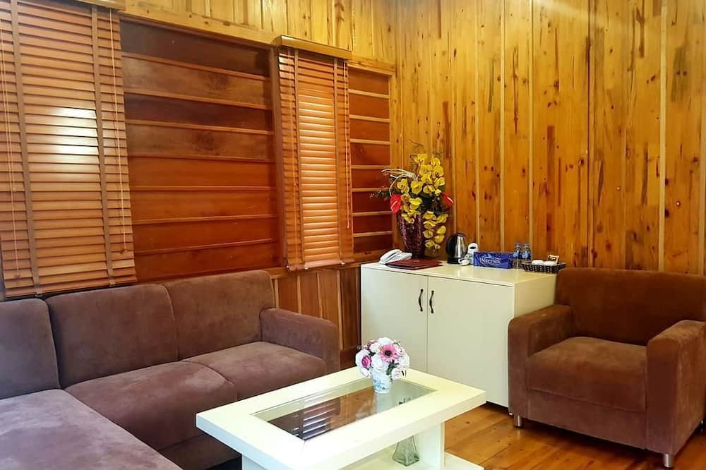 Suite (Anh Phat) - Salle de séjour