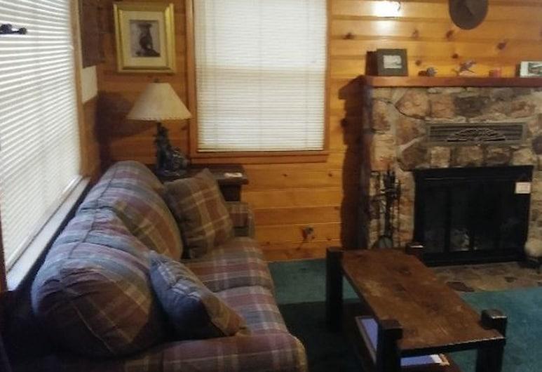 Evergreen Village Retreat, Danau Big Bear , Rumah, 3 Tempat Tidur Twin (Evergreen Village Retreat), Area Keluarga