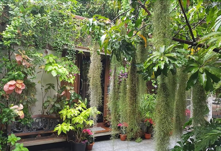 37 Nature House, Bangkok, Garden