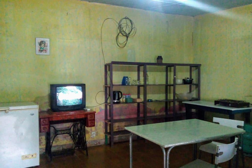 Namas mieste su pagrindiniais patogumais, 1 miegamasis, Nerūkantiesiems, bendras vonios kambarys - Svetainės zona