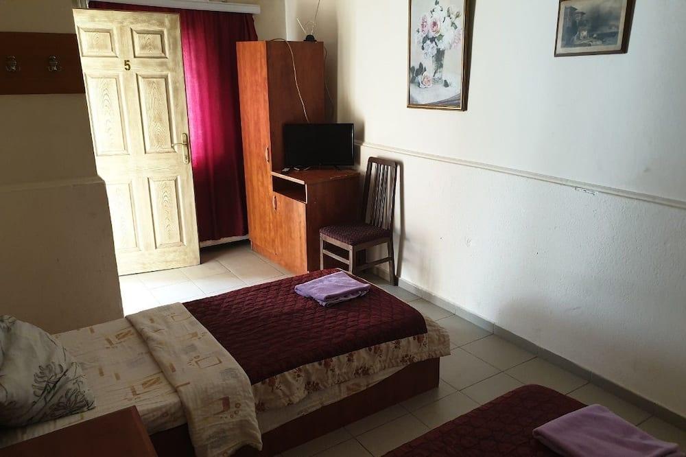 Eenvoudige penthouse - Kamer