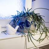Kahden hengen huone (blaue Zimmer) - Kylpyhuone