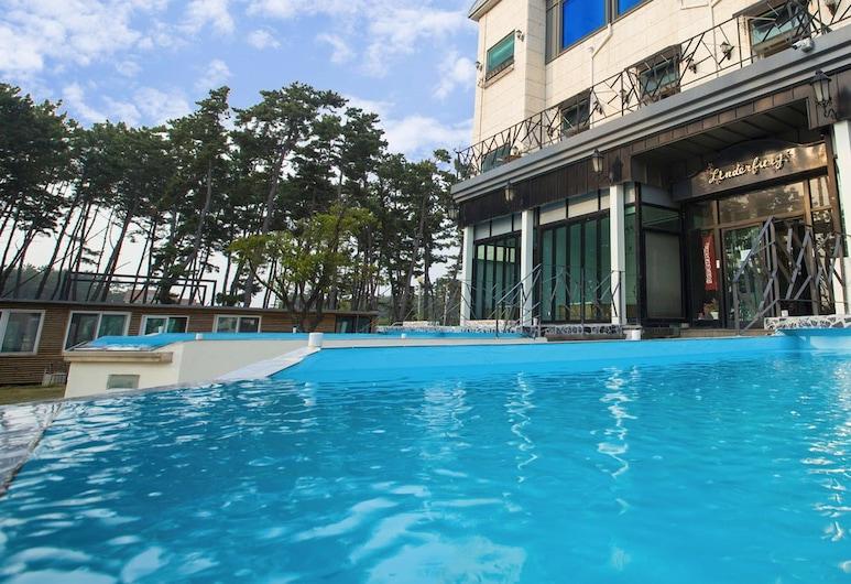 林德爾堡別墅酒店 - 附泳池, 泰安, 室外泳池