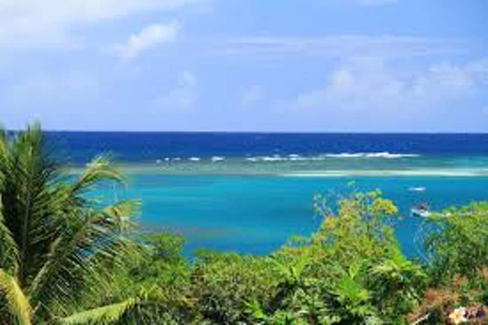 Skats uz pludmali/okeānu