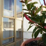 Appartement, 2 chambres - Balcon