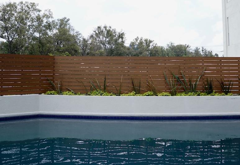 Metropolitan Suites, Zapopan, Hồ bơi